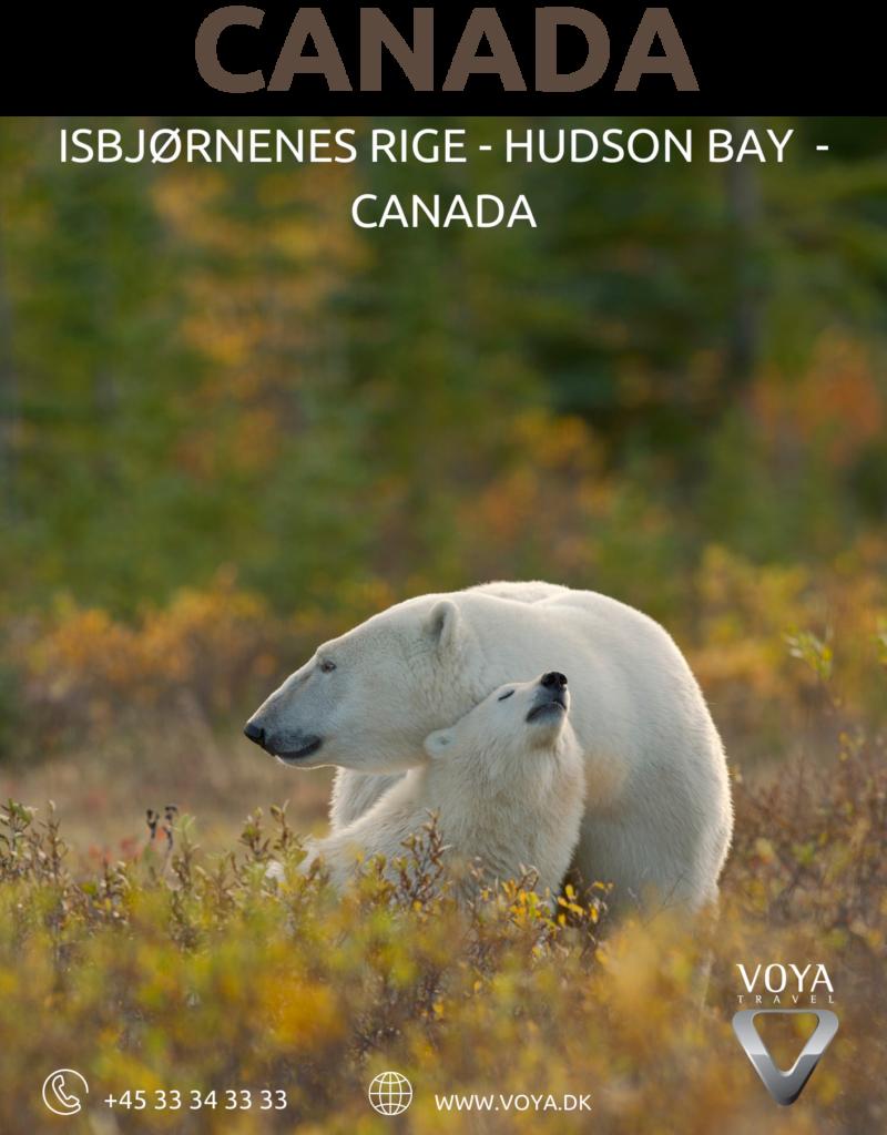 Rundrejse med rejseleder til Canada