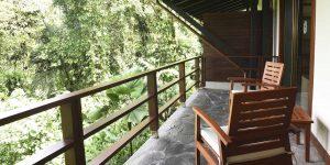 11-Rainforest-room