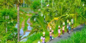 Alila Manggis - Bali | Voya Travel