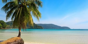 Beautiful-palm-tree-on-a-tropical-island-beach