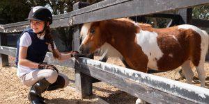 JA The Resort - Horse Riding.4