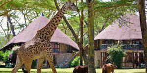 Lake-Naivasha-Sopa-Resort-8