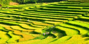 Puluong_retreat_Vietnam_landscape18