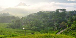 Puluong_retreat_Vietnam_landscape20
