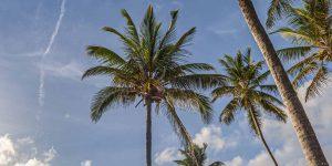 breezes-beach-2