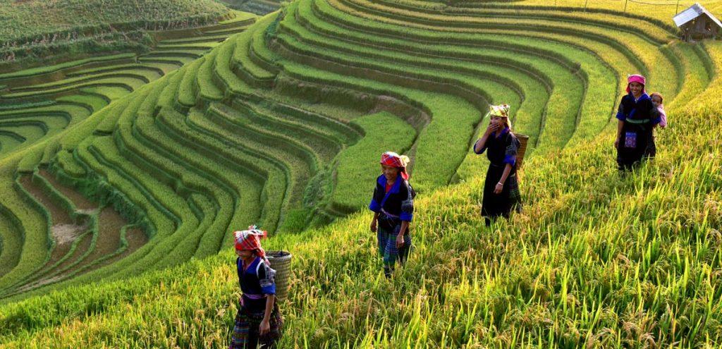 vietnam_header-1