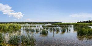 wetlands-sani-greece-02